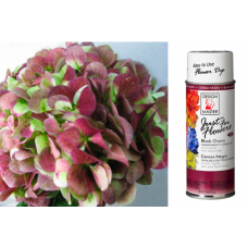 "Just For Flowers Spray ""Black Cherry"""