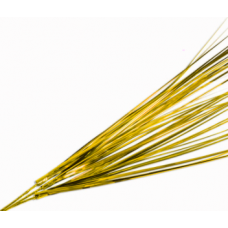 "18"" Onion Grass ""Gold"""